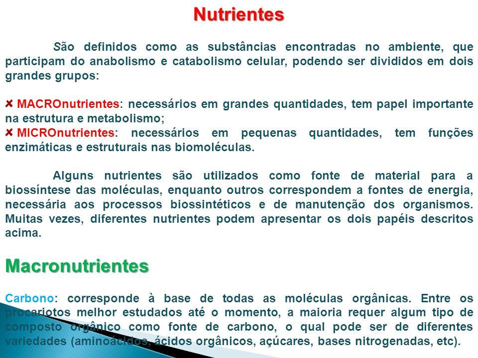 Nutrientes Macronutrientes