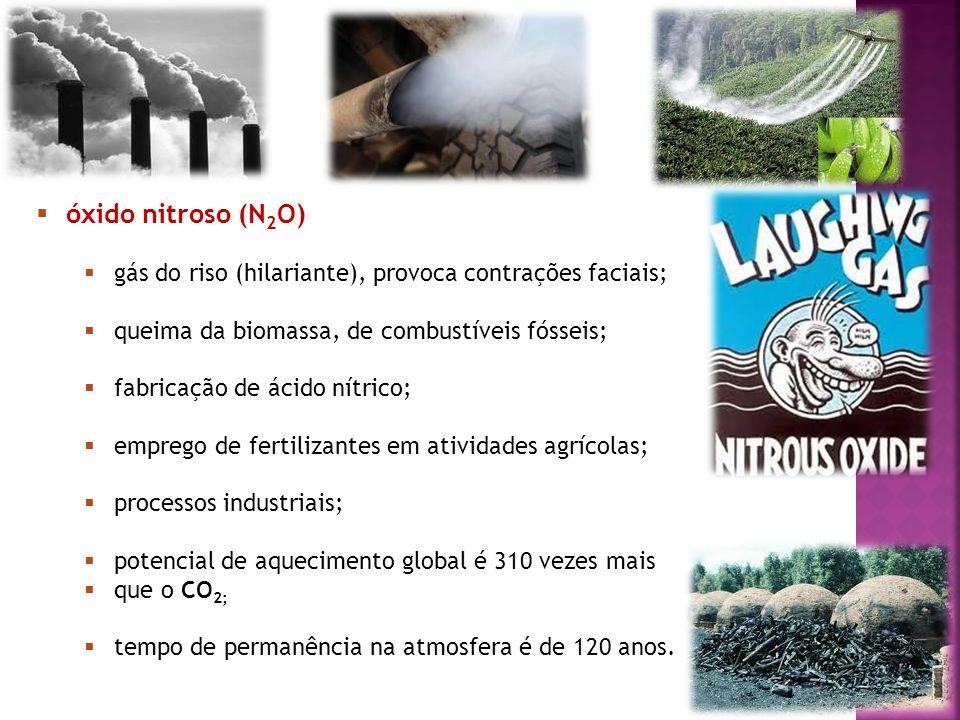 óxido nitroso (N2O) gás do riso (hilariante), provoca contrações faciais; queima da biomassa, de combustíveis fósseis;