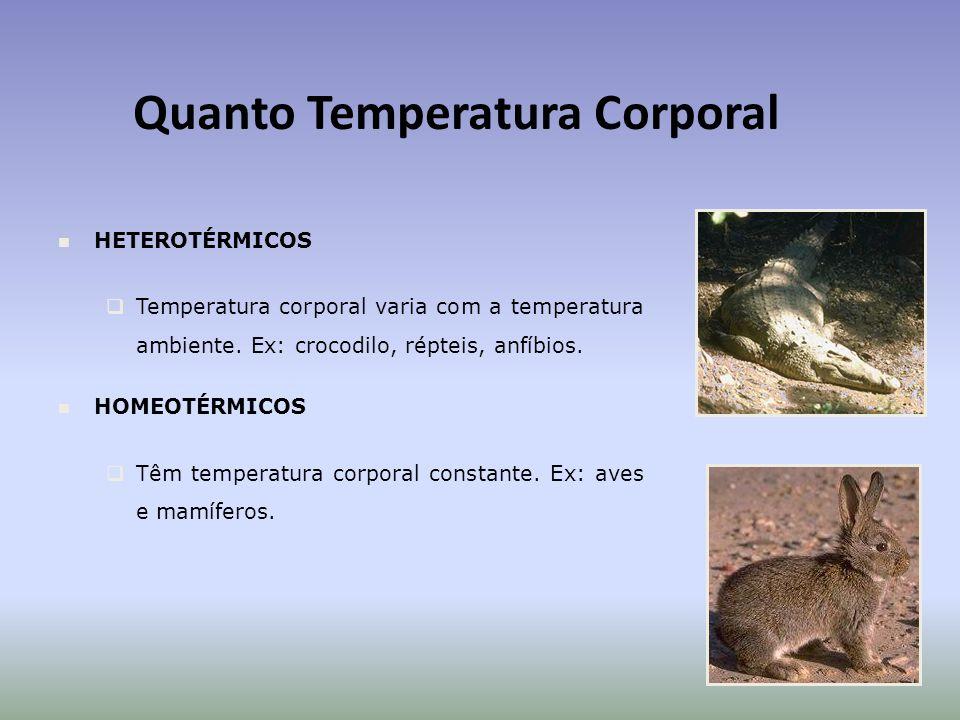 Quanto Temperatura Corporal
