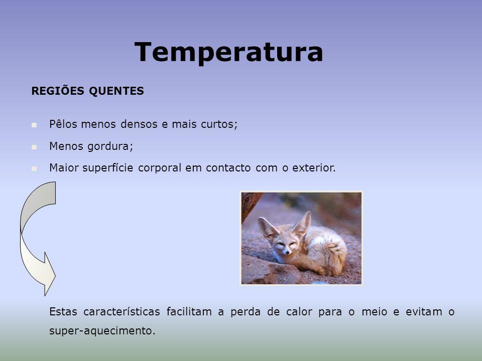 Temperatura REGIÕES QUENTES Pêlos menos densos e mais curtos;