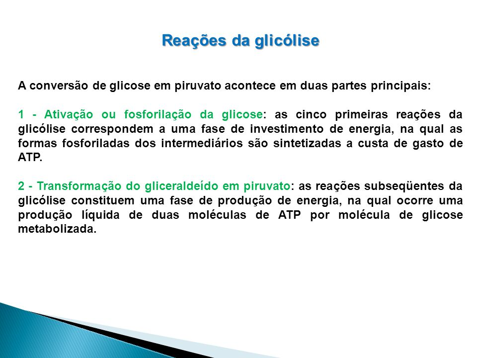 Reações da glicólise A conversão de glicose em piruvato acontece em duas partes principais: