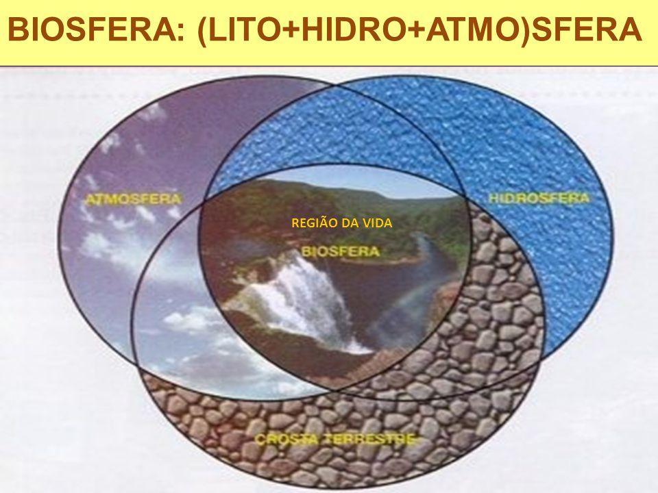 BIOSFERA: (LITO+HIDRO+ATMO)SFERA