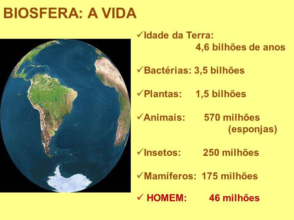 BIOSFERA: A VIDA Idade da Terra: 4,6 bilhões de anos