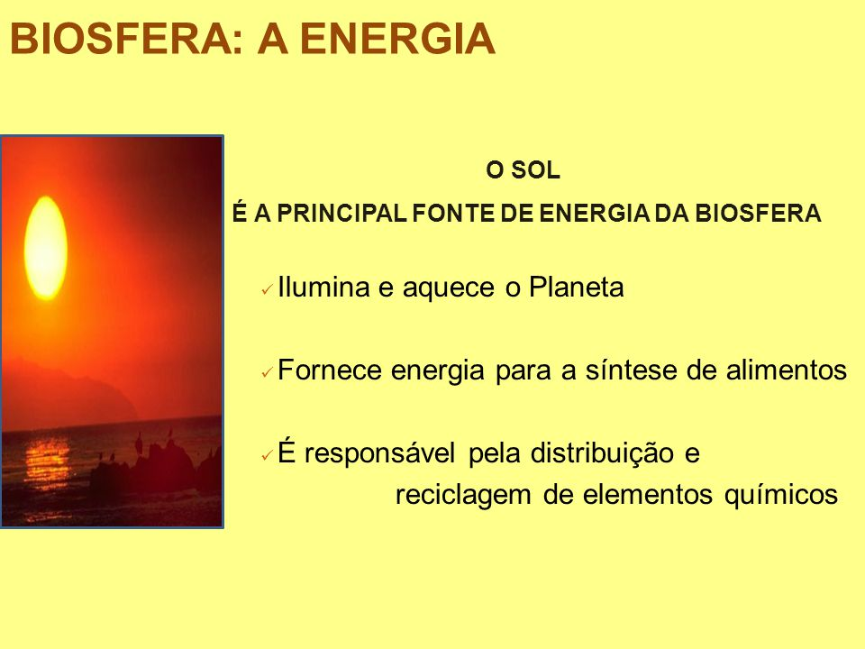É A PRINCIPAL FONTE DE ENERGIA DA BIOSFERA