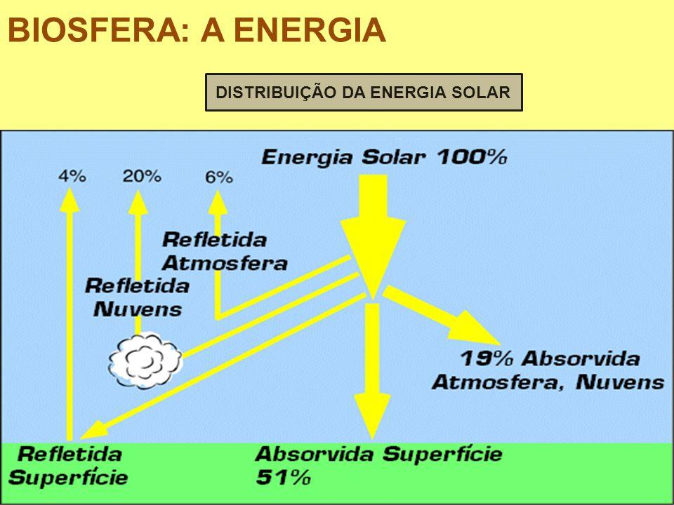 DISTRIBUIÇÃO DA ENERGIA SOLAR