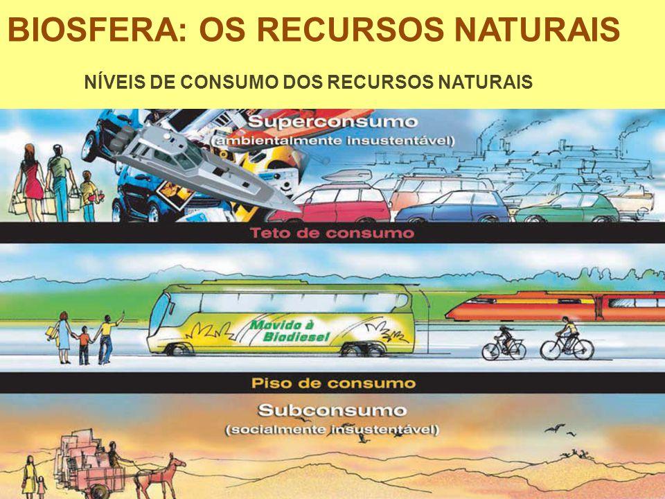 BIOSFERA: OS RECURSOS NATURAIS