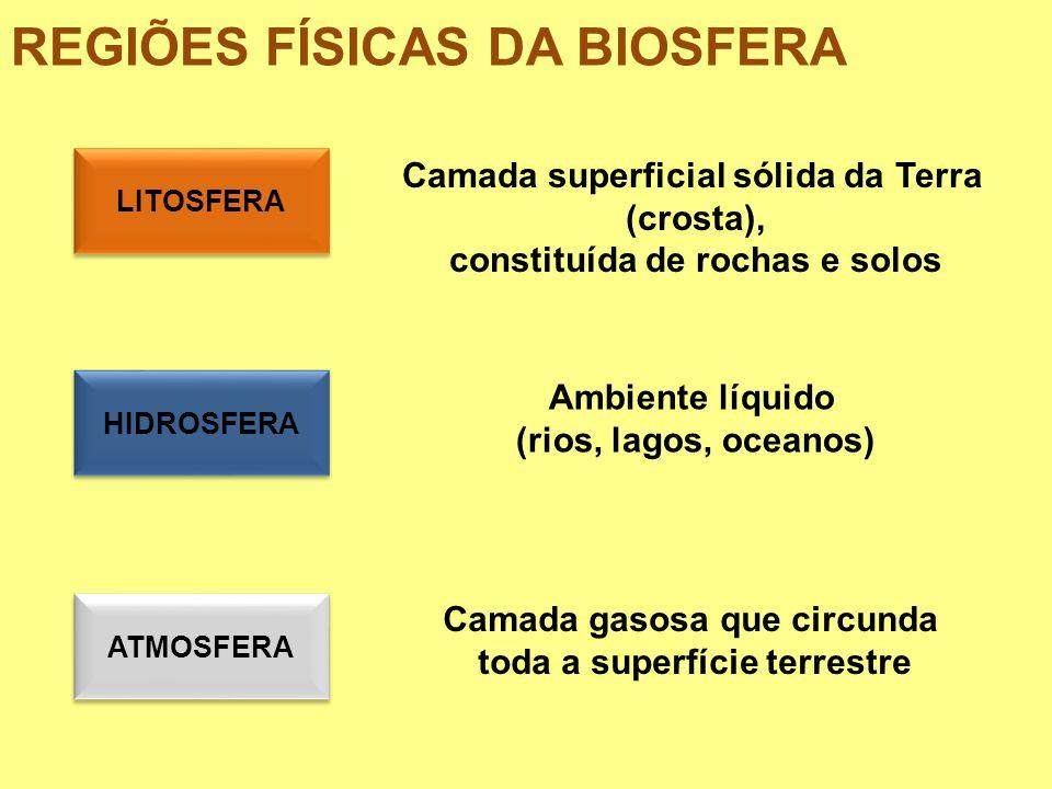 REGIÕES FÍSICAS DA BIOSFERA