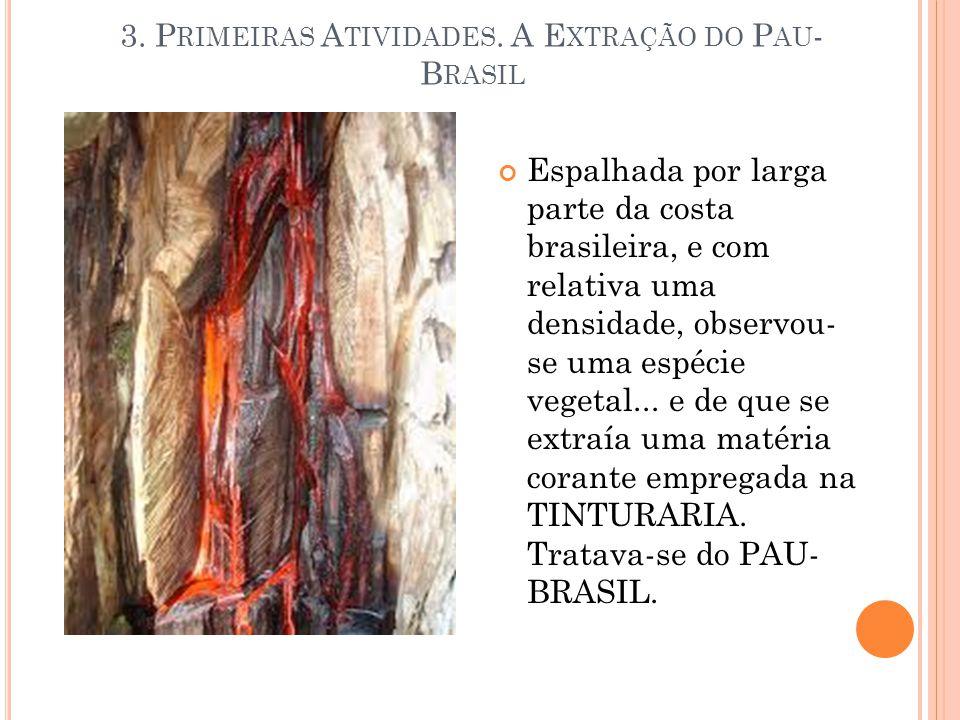 3. Primeiras Atividades. A Extração do Pau-Brasil