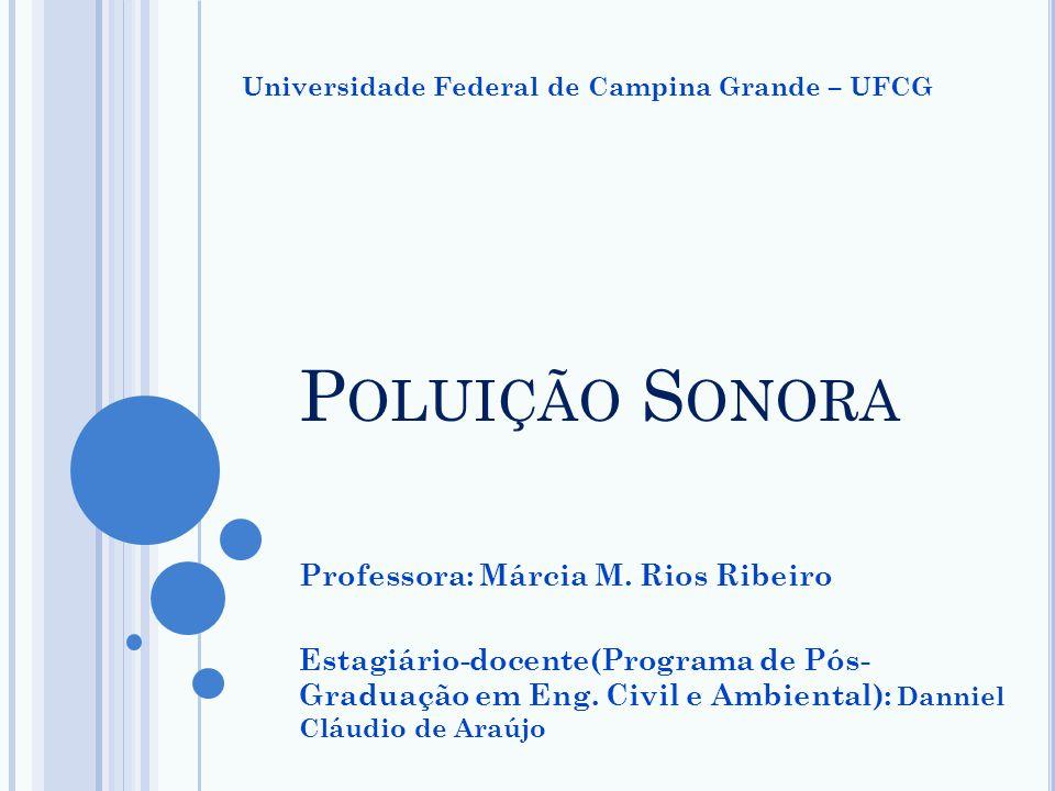 Poluição Sonora Professora: Márcia M. Rios Ribeiro