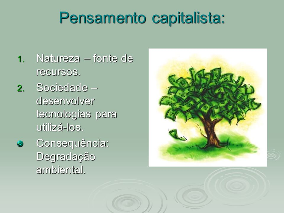 Pensamento capitalista: