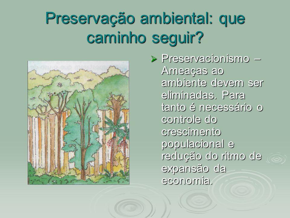 Preservação ambiental: que caminho seguir