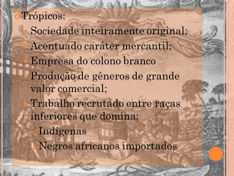 Trópicos: Sociedade inteiramente original; Acentuado caráter mercantil; Empresa do colono branco.