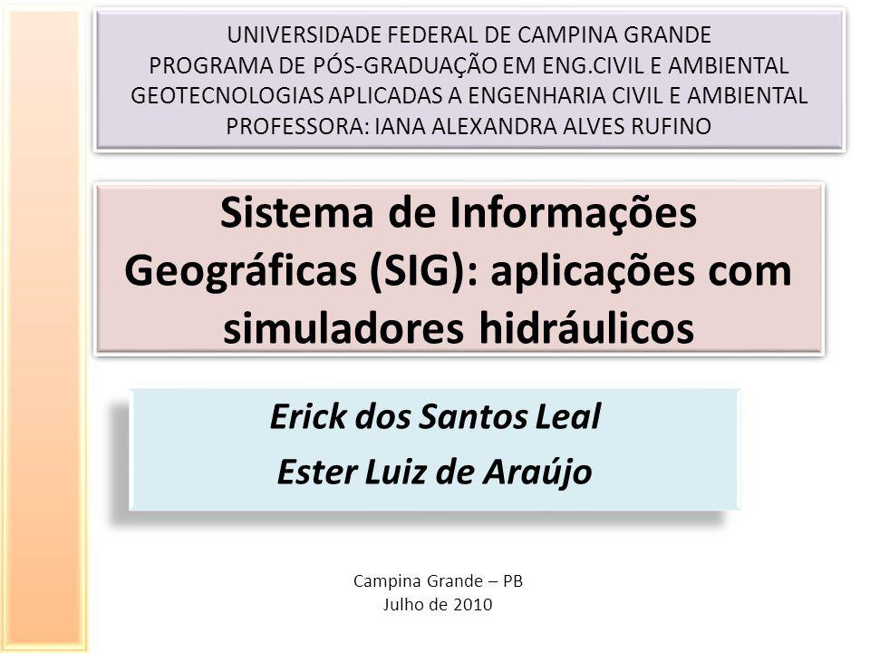 Erick dos Santos Leal Ester Luiz de Araújo