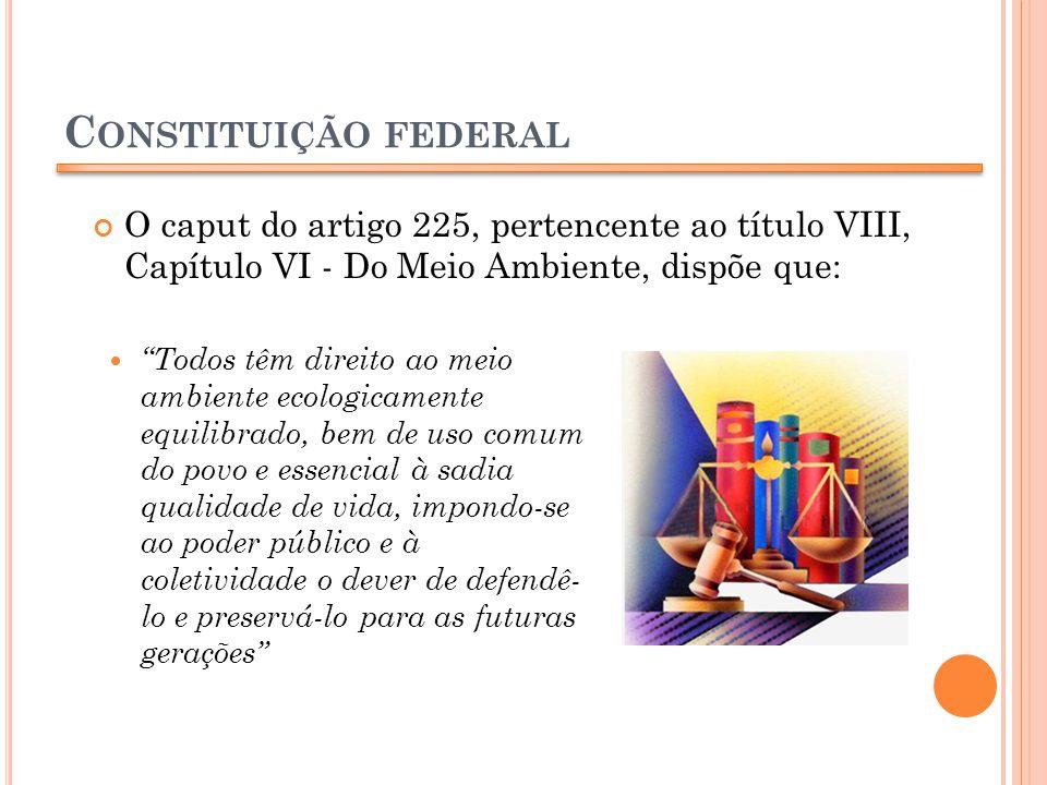 Constituição federal O caput do artigo 225, pertencente ao título VIII, Capítulo VI - Do Meio Ambiente, dispõe que: