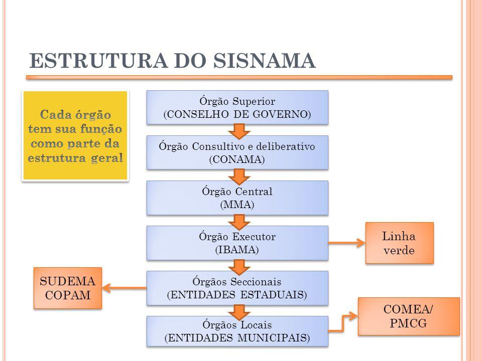 Cada órgão tem sua função como parte da estrutura geral