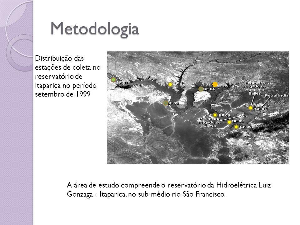 Metodologia Distribuição das estações de coleta no reservatório de Itaparica no período setembro de 1999.