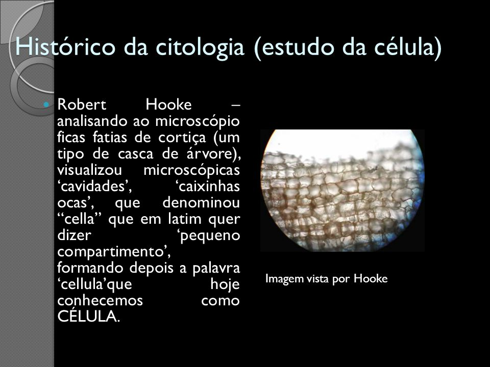 Histórico da citologia (estudo da célula)
