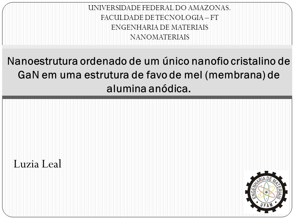 UNIVERSIDADE FEDERAL DO AMAZONAS.