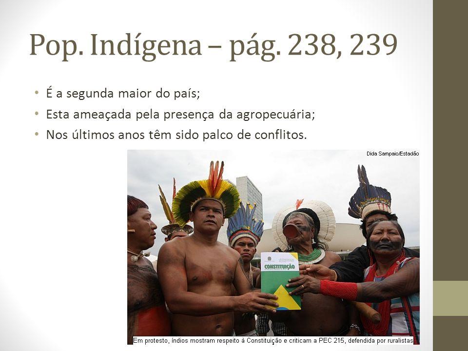 Pop. Indígena – pág. 238, 239 É a segunda maior do país;