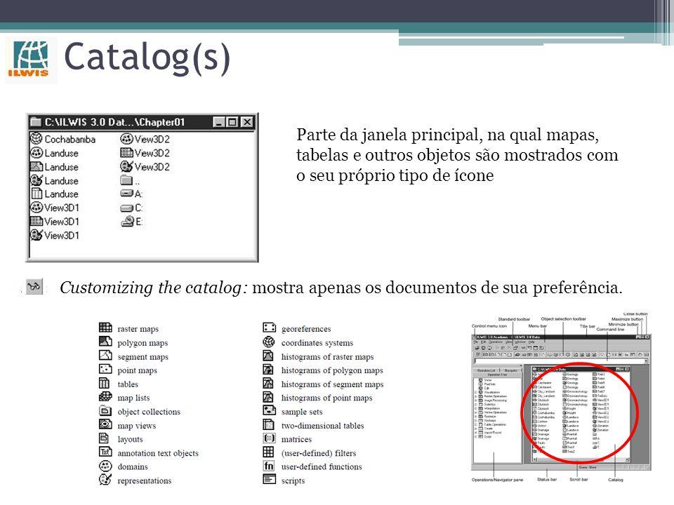 Catalog(s) Parte da janela principal, na qual mapas, tabelas e outros objetos são mostrados com o seu próprio tipo de ícone.