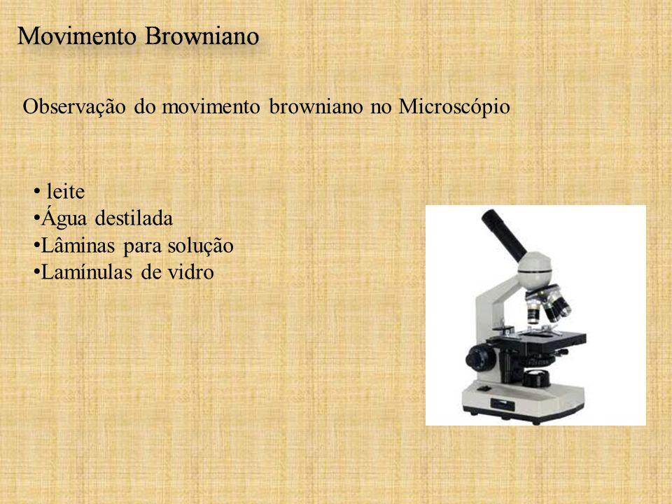 Observação do movimento browniano no Microscópio