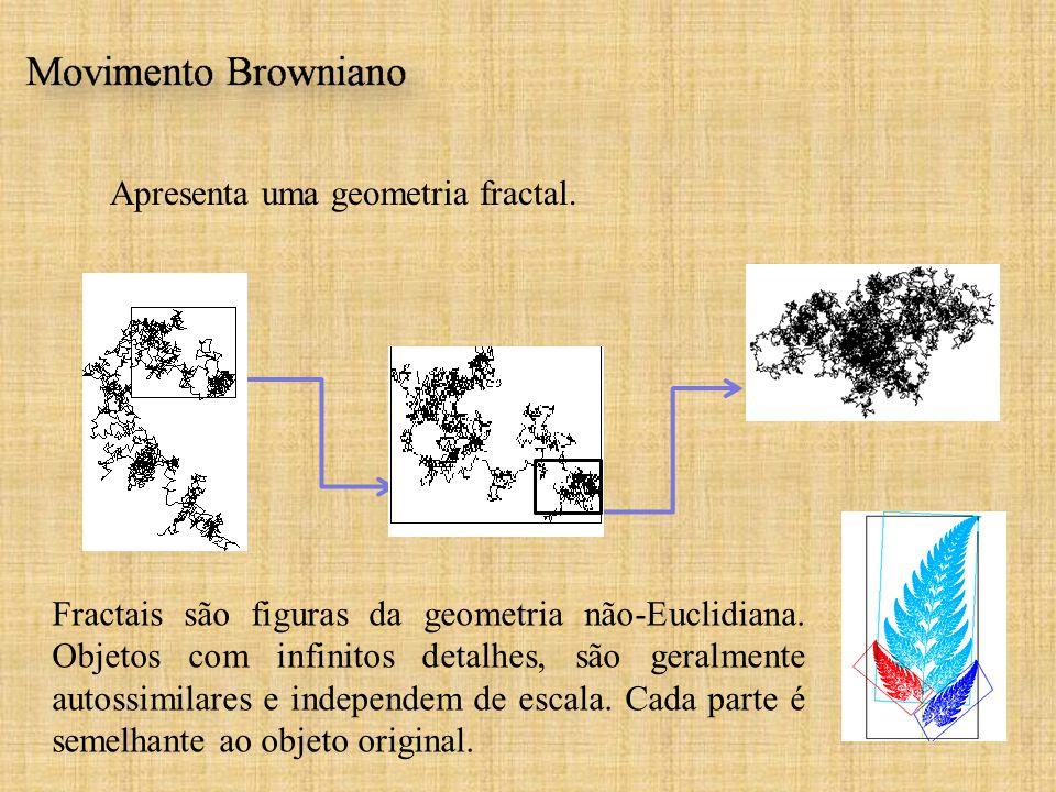 Apresenta uma geometria fractal.