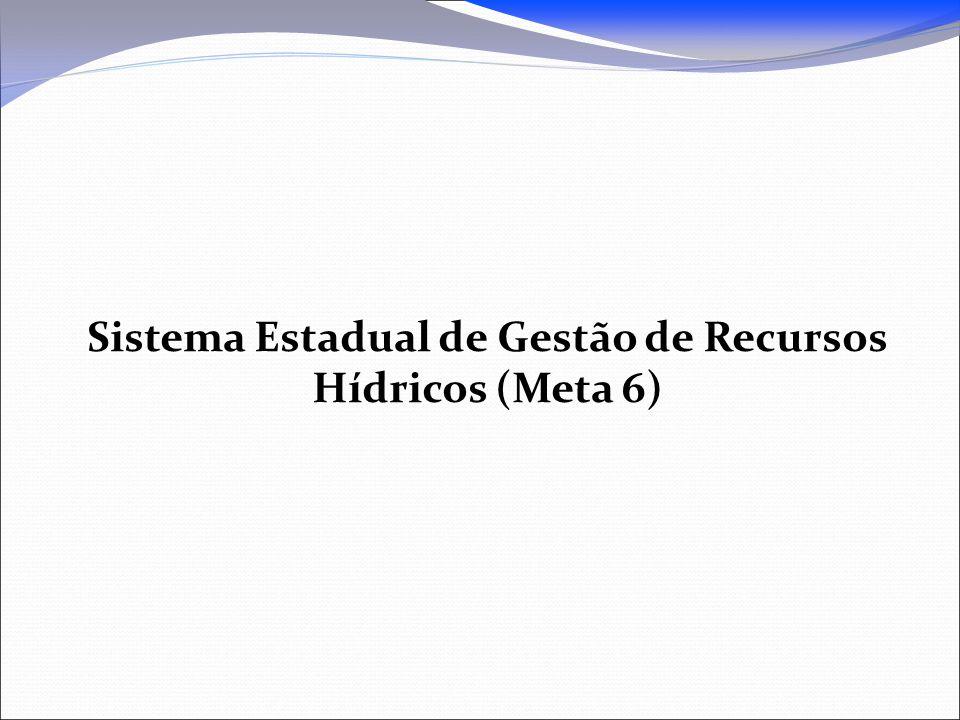 Sistema Estadual de Gestão de Recursos Hídricos (Meta 6)