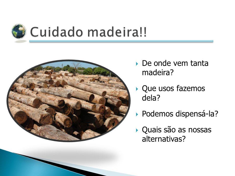 Cuidado madeira!! De onde vem tanta madeira Que usos fazemos dela