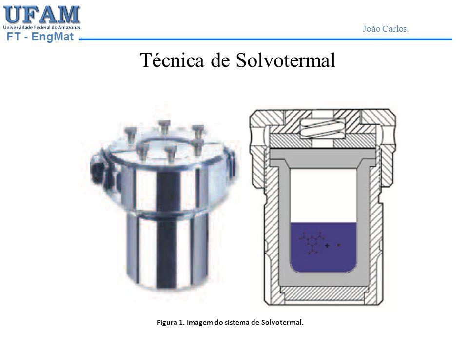 Figura 1. Imagem do sistema de Solvotermal.