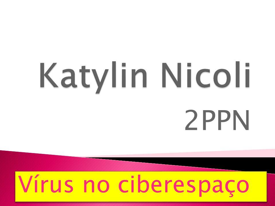 Katylin Nicoli 2PPN Vírus no ciberespaço