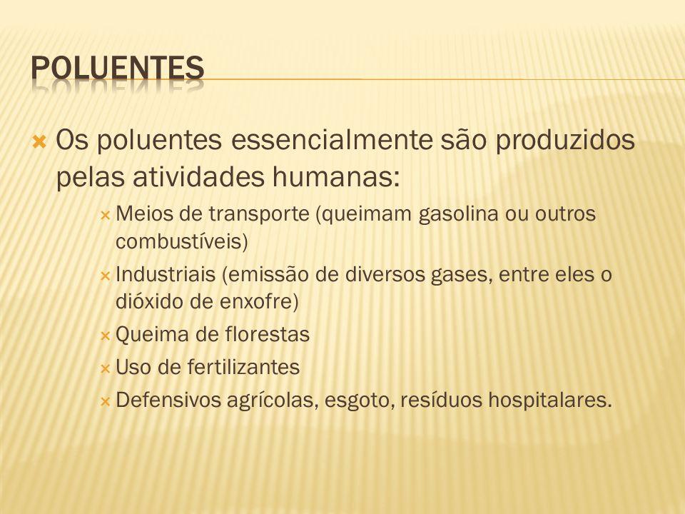 Poluentes Os poluentes essencialmente são produzidos pelas atividades humanas: Meios de transporte (queimam gasolina ou outros combustíveis)