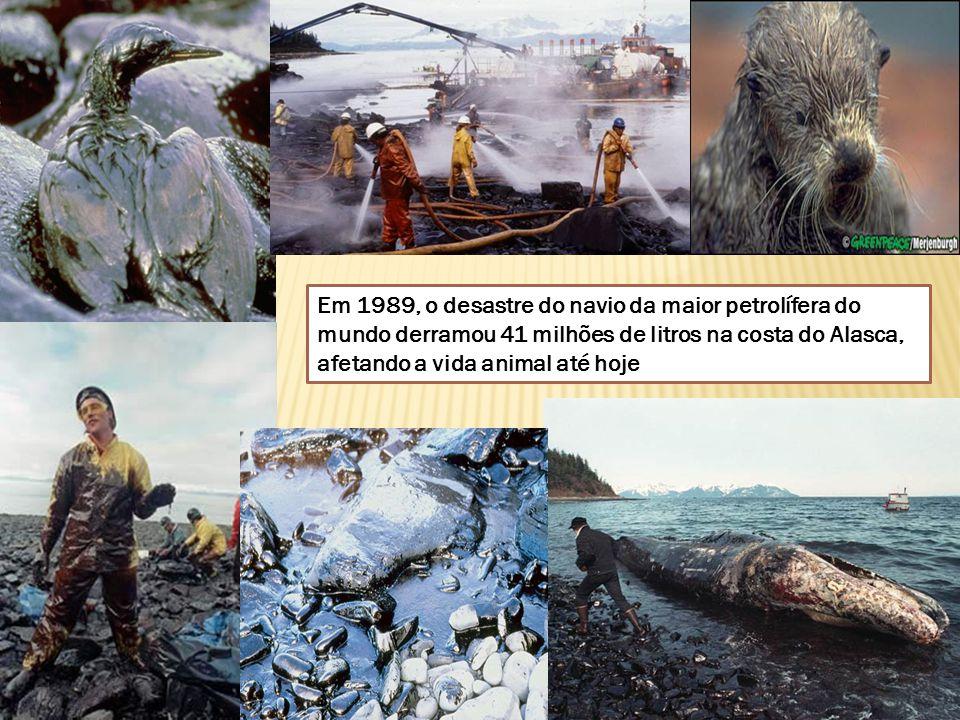 Em 1989, o desastre do navio da maior petrolífera do mundo derramou 41 milhões de litros na costa do Alasca, afetando a vida animal até hoje