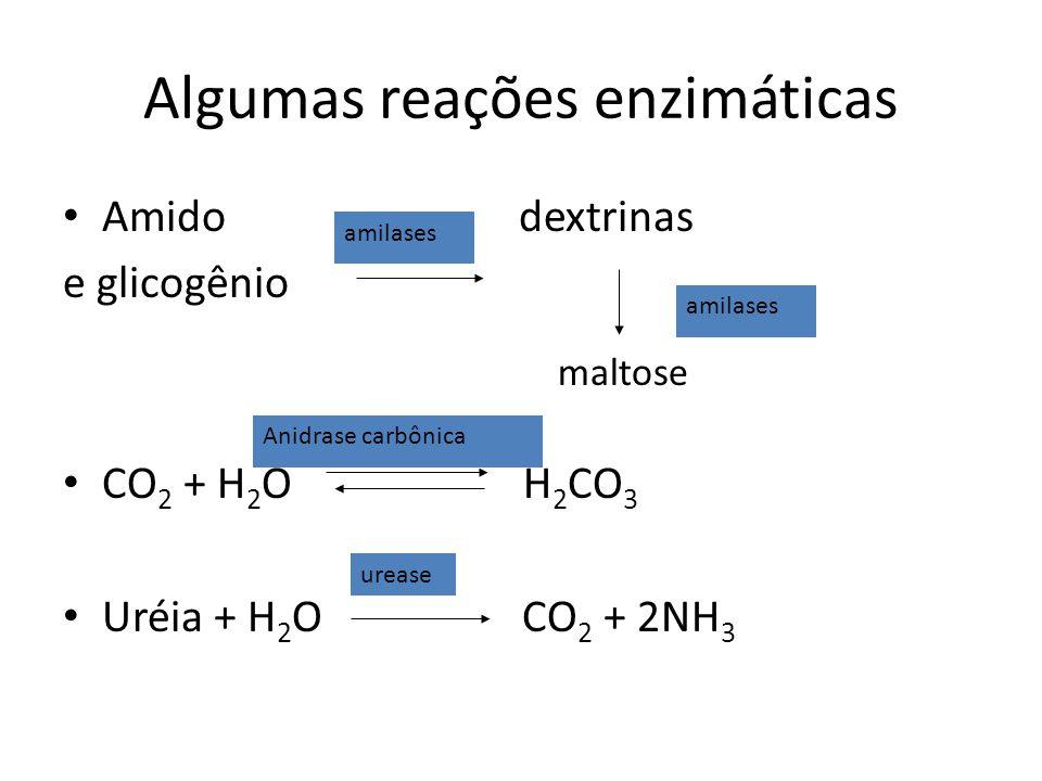 Algumas reações enzimáticas