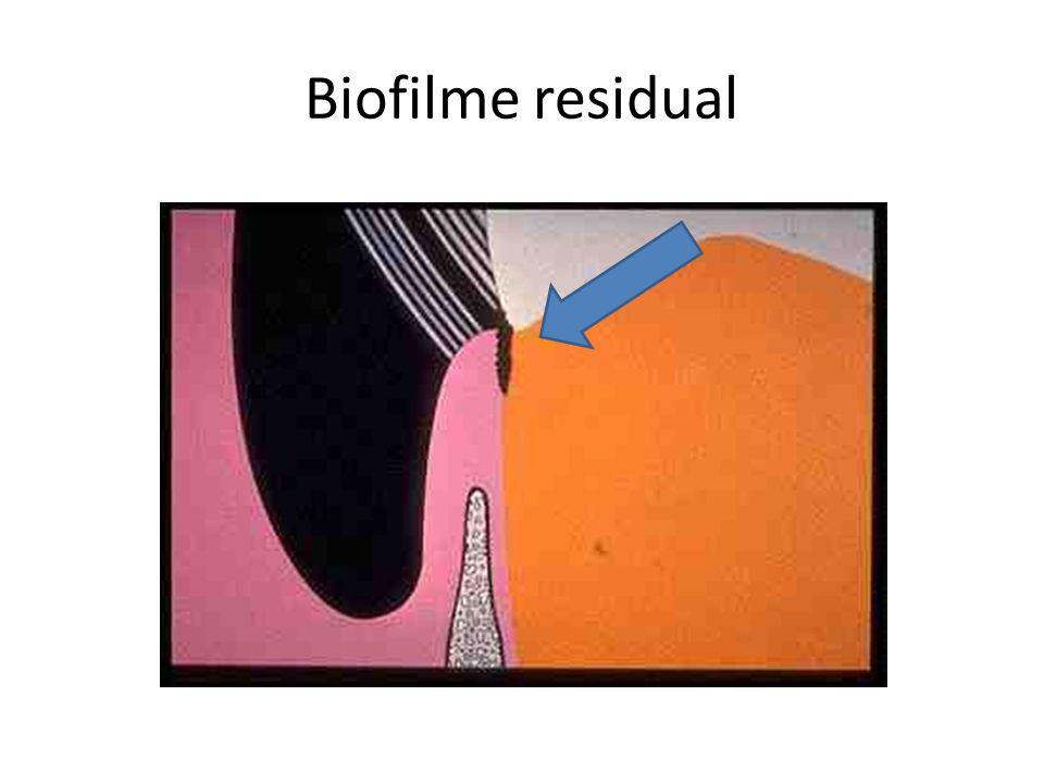 Biofilme residual