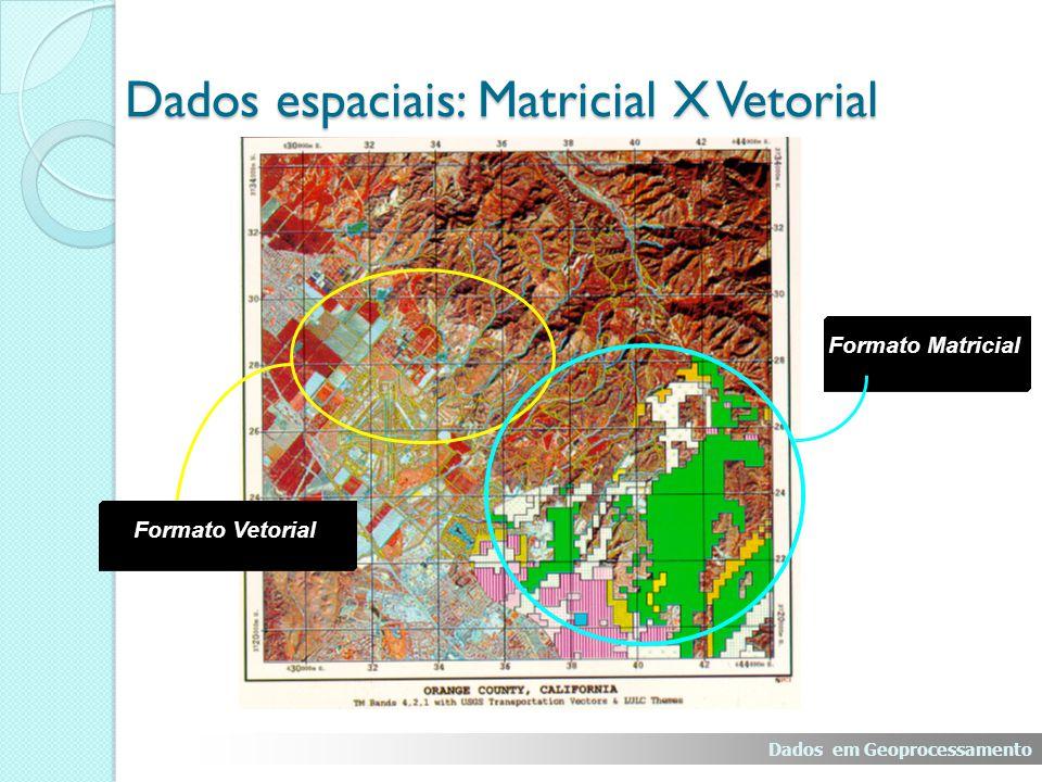 Dados espaciais: Matricial X Vetorial