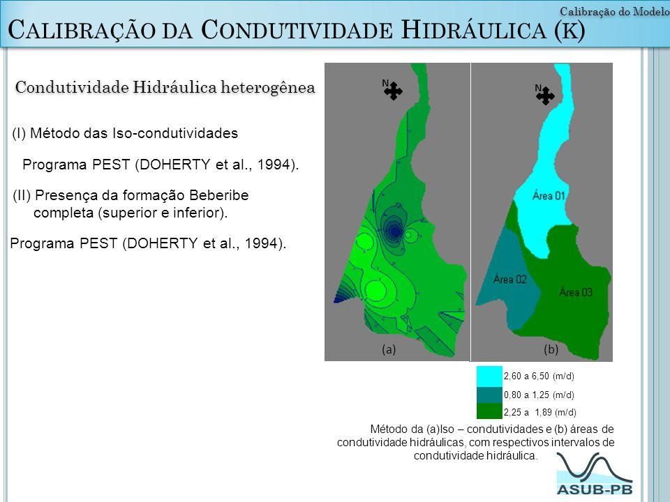 Calibração da Condutividade Hidráulica (k)