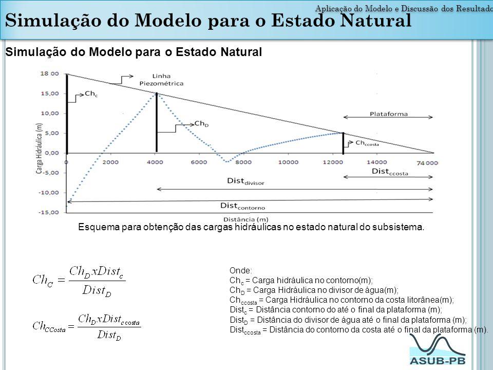 Aplicação do Modelo e Discussão dos Resultados