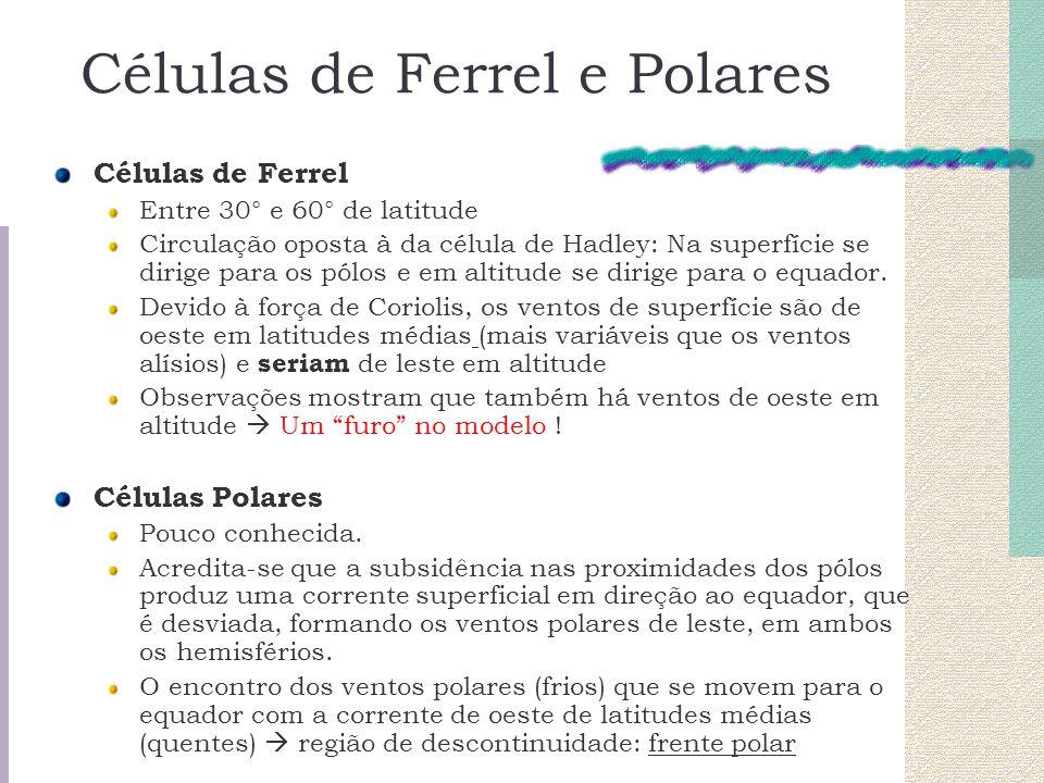 Células de Ferrel e Polares