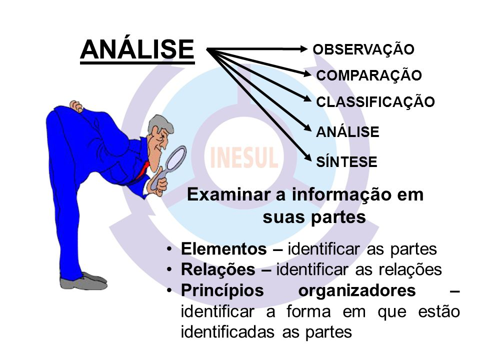 Examinar a informação em suas partes