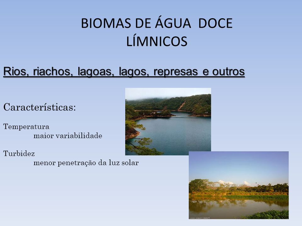 BIOMAS DE ÁGUA DOCE LÍMNICOS