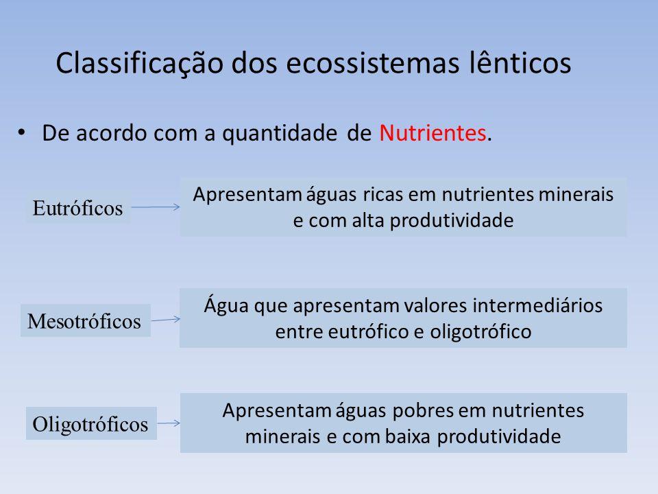 Classificação dos ecossistemas lênticos