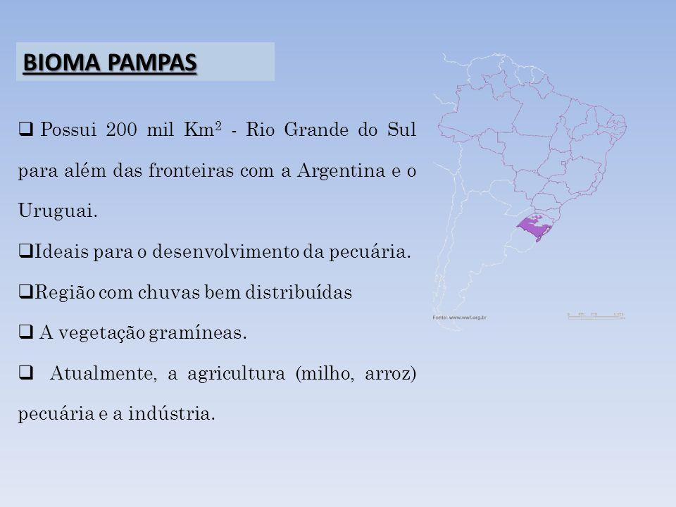 BIOMA PAMPAS Possui 200 mil Km2 - Rio Grande do Sul para além das fronteiras com a Argentina e o Uruguai.