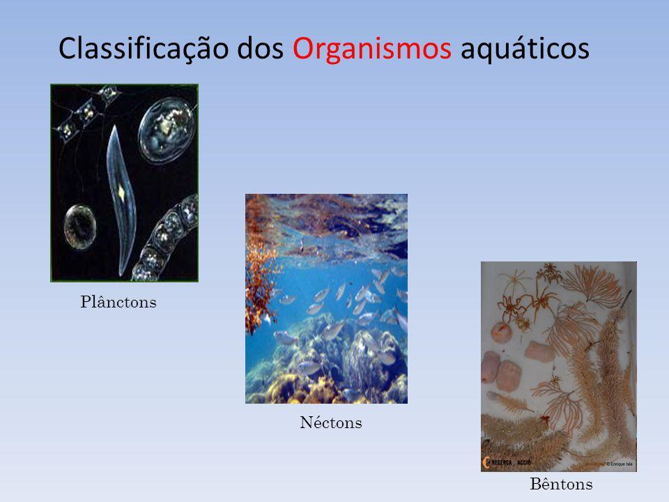 Classificação dos Organismos aquáticos