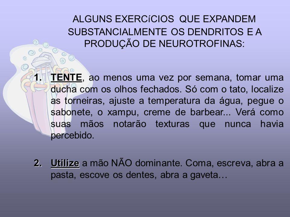 ALGUNS EXERCíCIOS QUE EXPANDEM SUBSTANCIALMENTE OS DENDRITOS E A PRODUÇÃO DE NEUROTROFINAS: