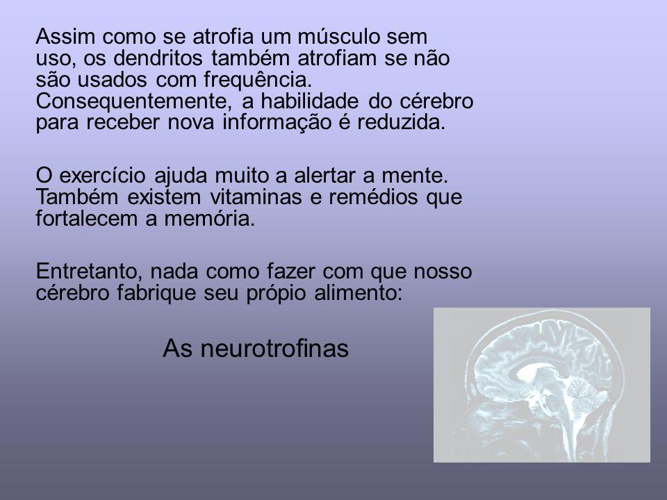 Assim como se atrofia um músculo sem uso, os dendritos também atrofiam se não são usados com frequência. Consequentemente, a habilidade do cérebro para receber nova informação é reduzida.
