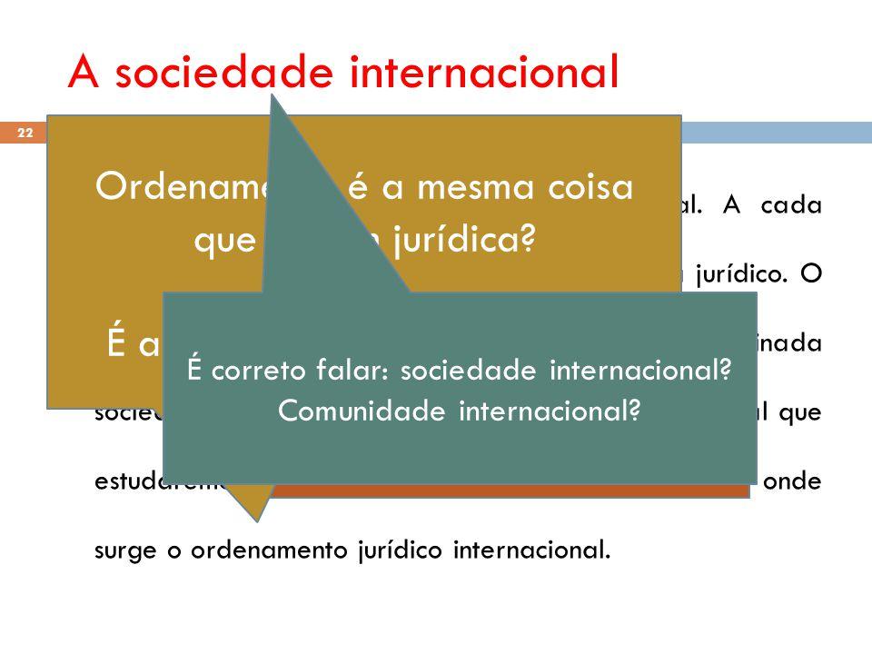 A sociedade internacional