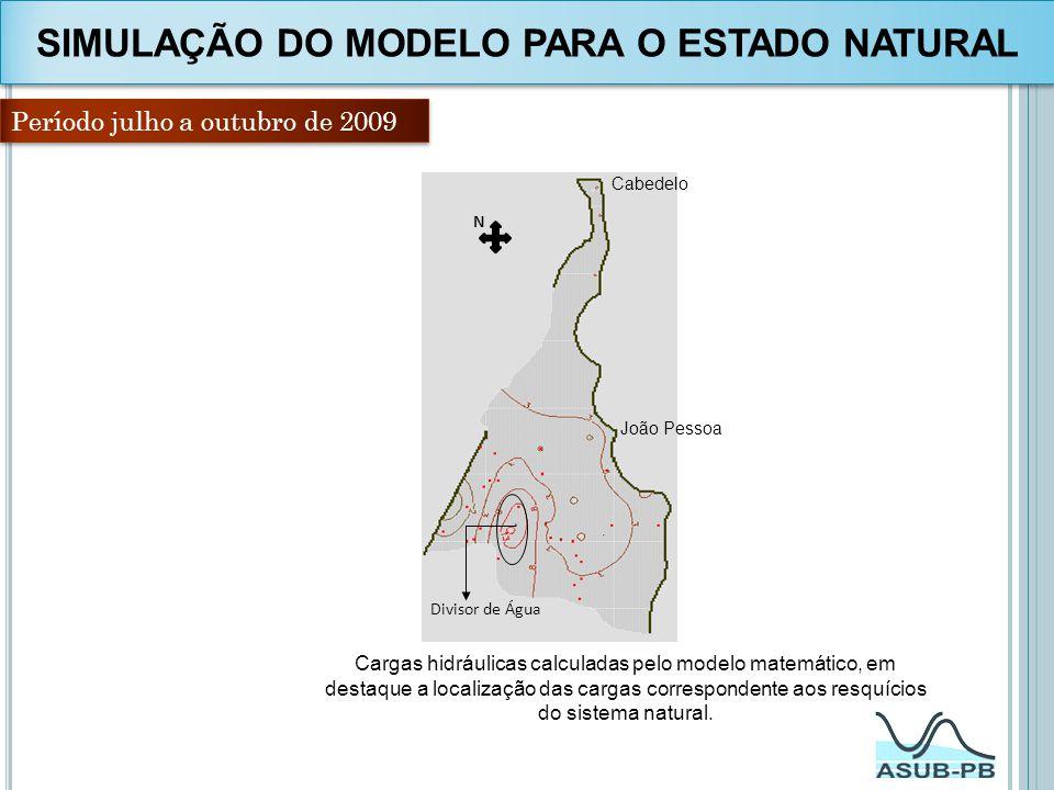 SIMULAÇÃO DO MODELO PARA O ESTADO NATURAL