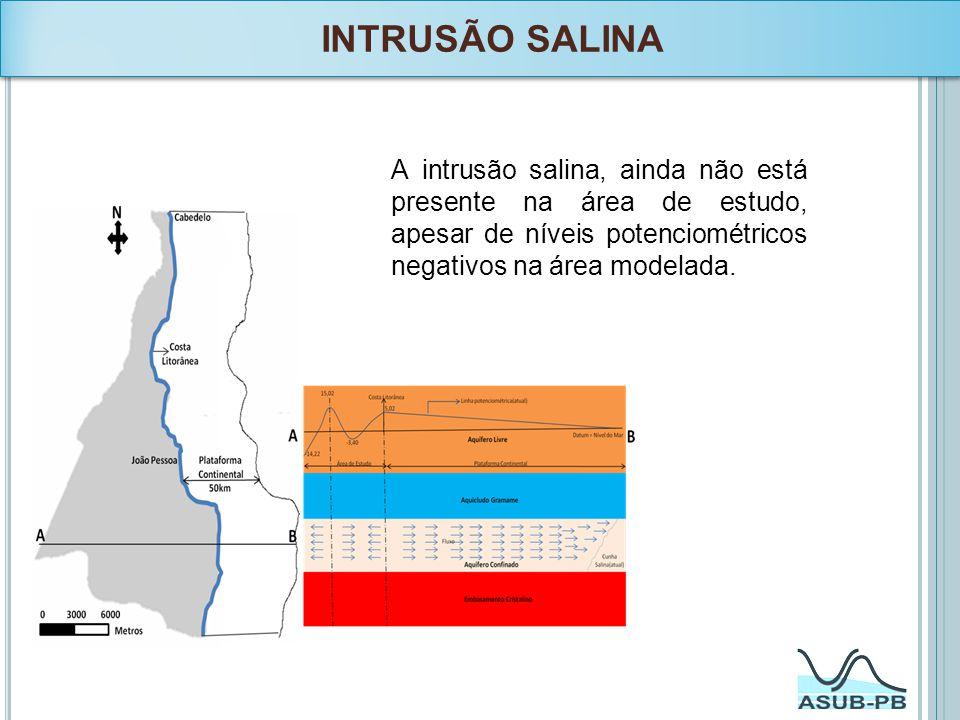INTRUSÃO SALINA A intrusão salina, ainda não está presente na área de estudo, apesar de níveis potenciométricos negativos na área modelada.