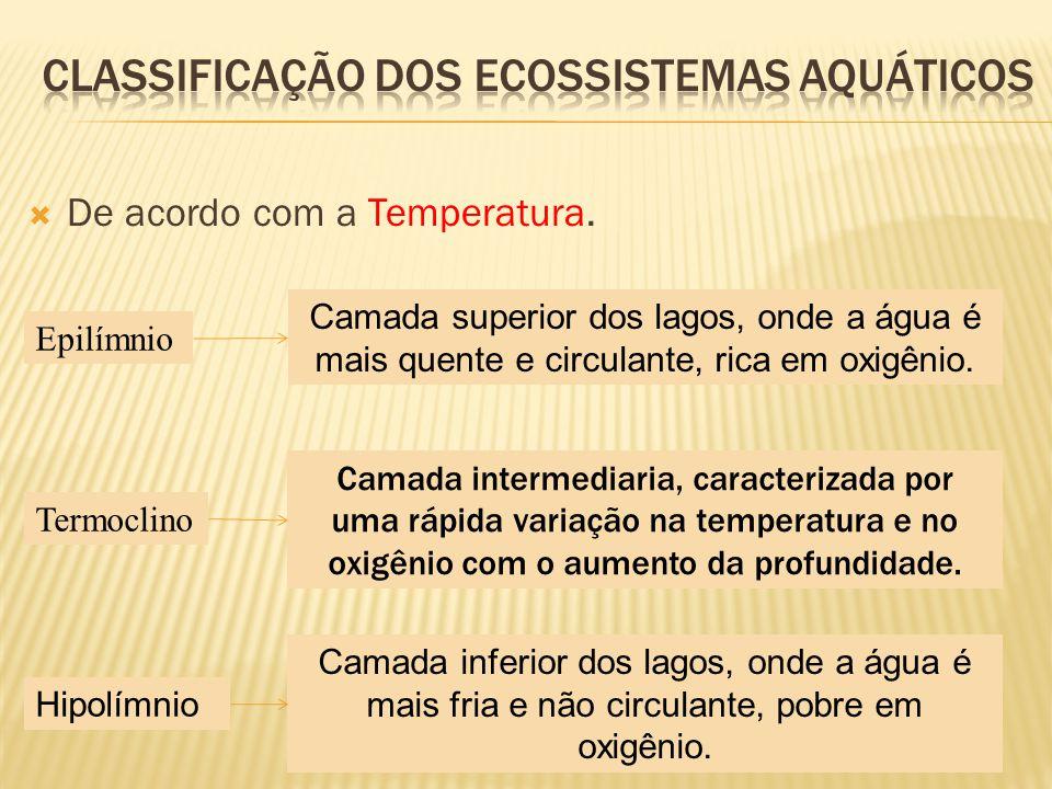 Classificação dos ecossistemas aquáticos