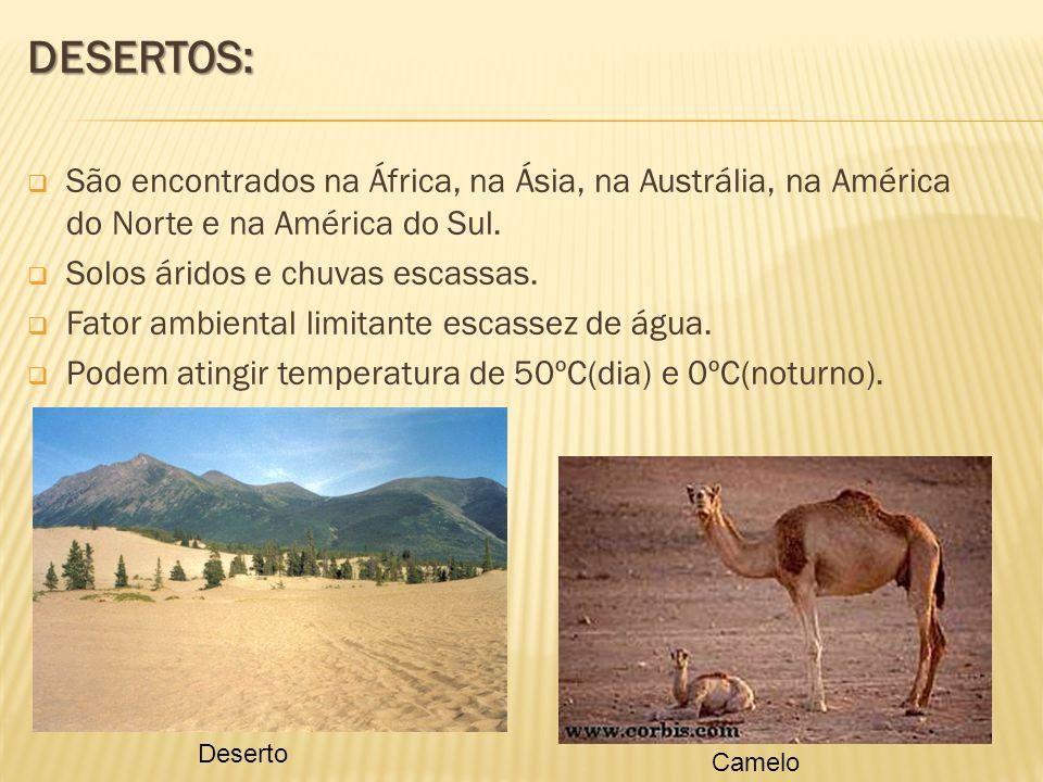 DESERTOS: São encontrados na África, na Ásia, na Austrália, na América do Norte e na América do Sul.
